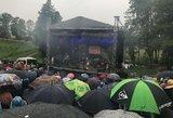 Andriaus Mamontovo koncerto Ilzenbergo dvaro ūkyje klausėsi ir karvės