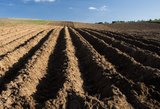 Aistros dėl žemės pardavimo kaista: prieš VRK – laiškų lavina