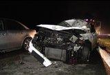 Tragiški vaizdai iš mirtino susidūrimo su briedžiu: prabilo ir kitas avarijos dalyvis