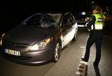 Ignalinos rajone automobilis susidūrė su briedžiu: sužalotas žmogus