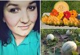 Roberta darže augina melionus: pavyks kiekvienam