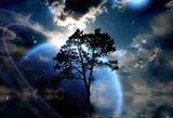 """Astrologai įspėja dėl """"juodojo pirmadienio"""": pasipils blogos žinios ir traumos"""