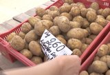Lietuviai nukasa pirmąsias bulves –kainos turguje atbaido ne vieną