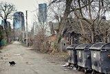 Suskaičiavo, kur lietuviai gyvena taupiau: mieste ar kaime