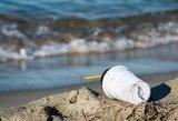 Mokslininkai nustatė, kas padės susidoroti su plastiku vandenynuose