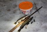 Pasalą surengę aplinkosaugininkai pričiupo lydekas žvejojusį Plungės rajono gyventoją