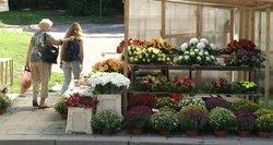 Naujas siūlymas Seime dėl laisvadienių: ilsėtumės kitaip