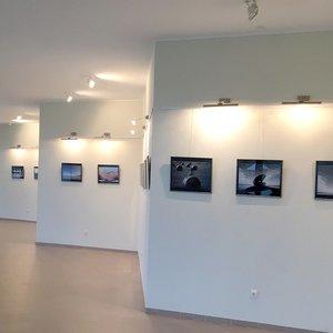 Išskirtinė fotomenininko Algimanto Barzdžiaus fotografijų paroda prikaustė lankytojų dėmesį