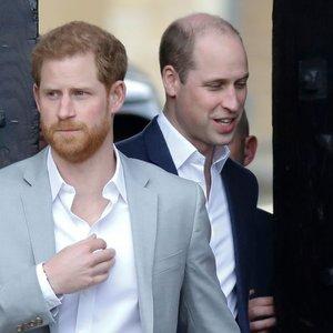Paaiškėjo, dėl ko iš tiesų Harry pykstasi su Williamu: įtampą jaučia jau seniai