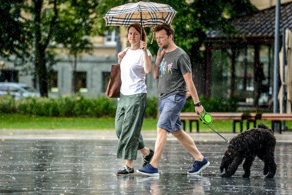 Lietus (nuotr. Justinas Auškelis/Fotodiena.lt)