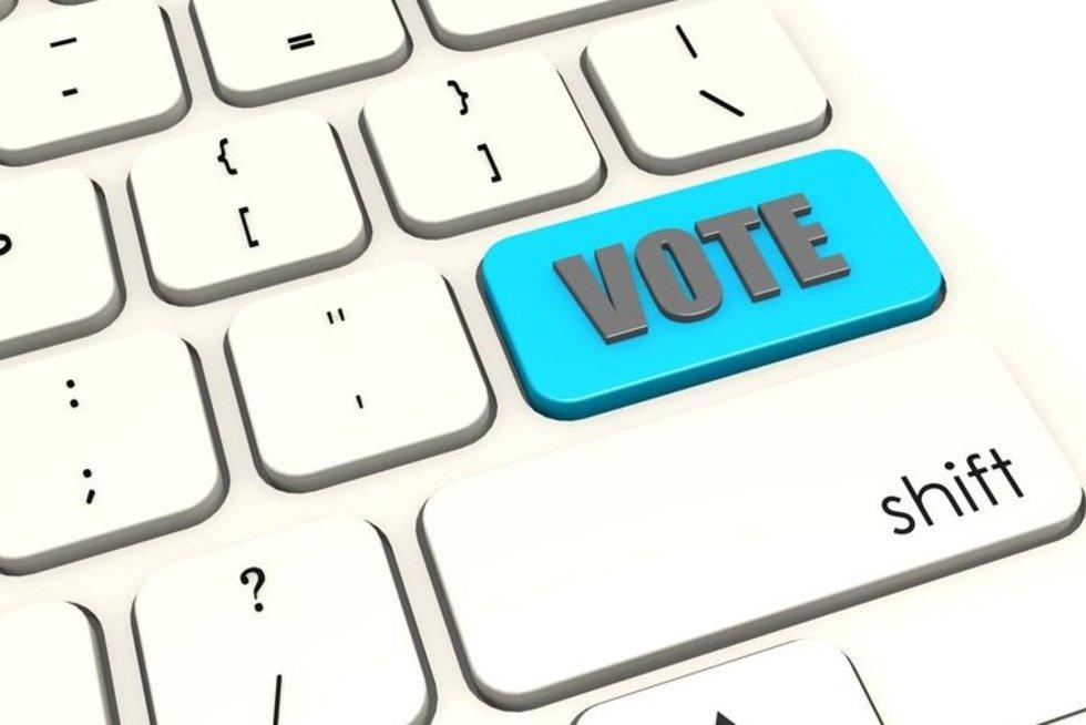 Balsavimas internetu (nuotr. Fotolia.com)