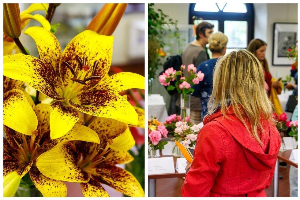 Gražiausių vasaros gėlių paroda  (nuotr. Tv3.lt/Ruslano Kondratjevo)