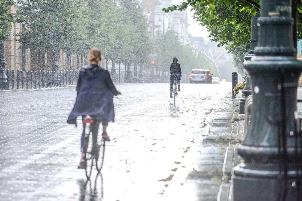 Lietus (nuotr. Fotodiena.lt)