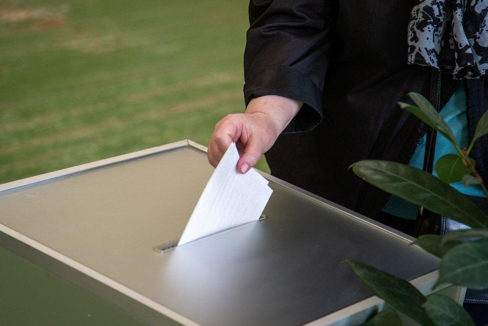 Rinkėjai balsuoja rinkimuose (Fotodiena/Justinas Auškelis)