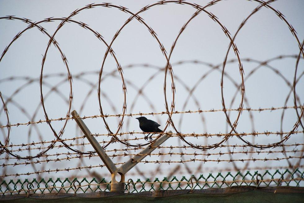 Tyrimas dėl CŽV kalėjimų Lietuvoje buvo nutrauktas (Scanpix nuotr.) (nuotr. Balsas.lt)