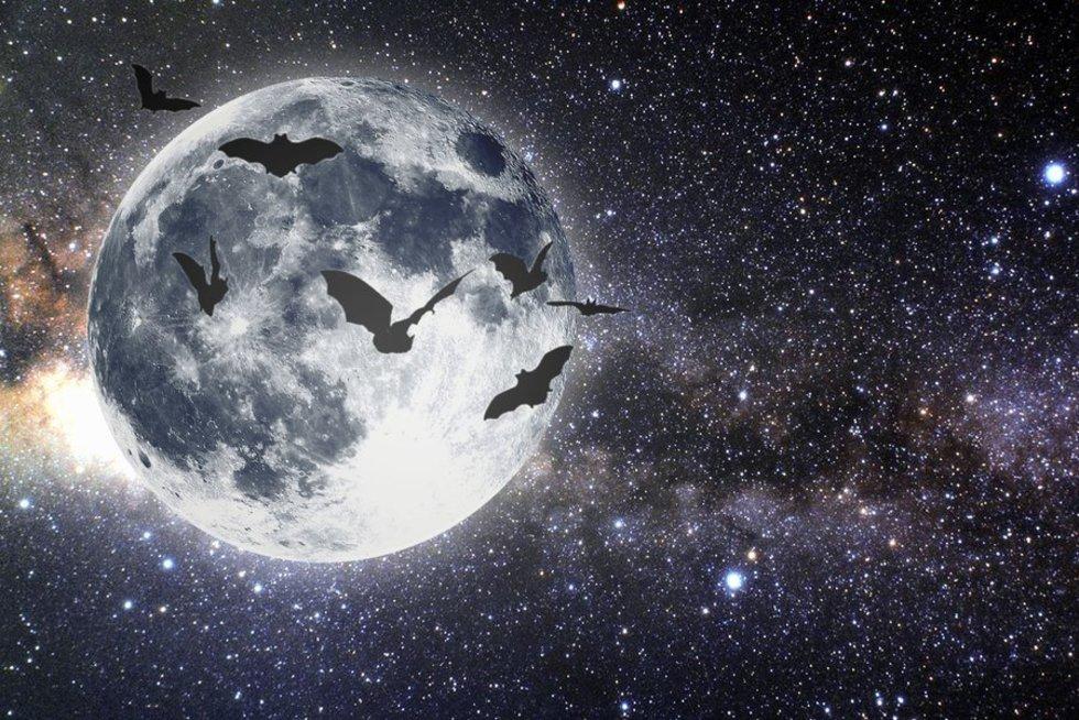 Horoskopas (nuotr. Fotolia.com)