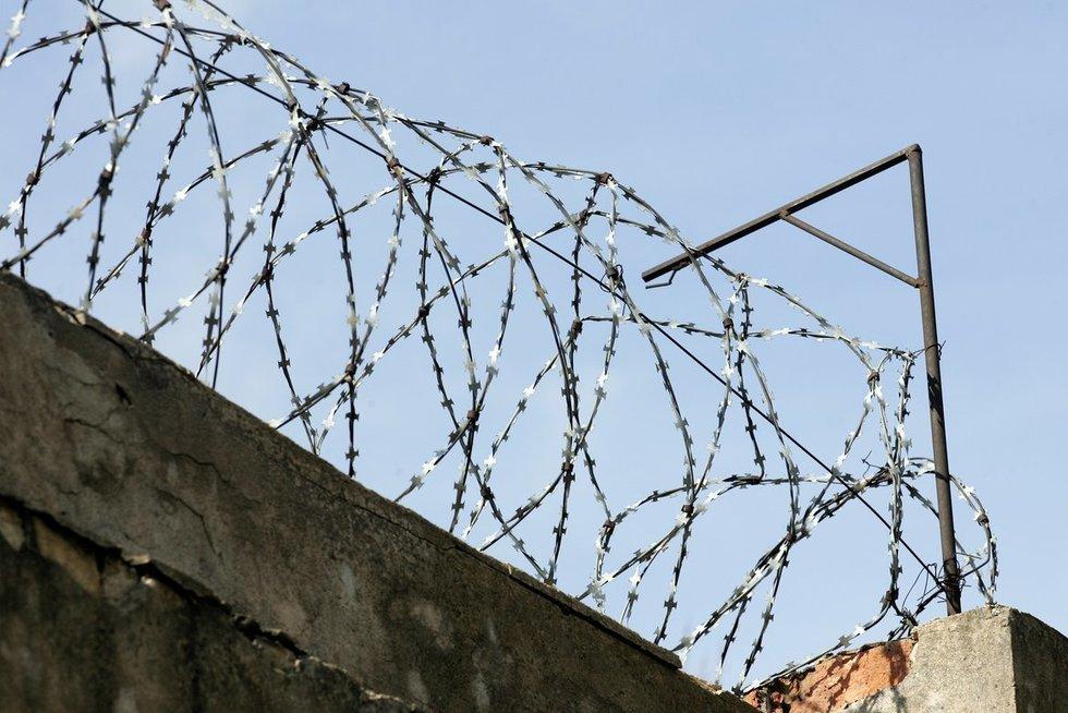 Pataisos namų tvora (Tomas Urbelionis/Fotobankas)