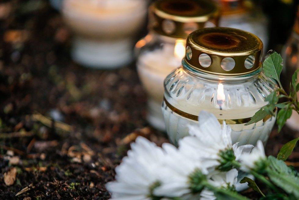 Vėlinėms žmonės pamėgo gyvas gėles (nuotr. Fotodiena.lt)