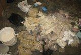 Muitinės kriminalistams Vilniuje įkliuvo narkotikų gabentojai
