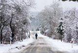 Amerikiečių mokslininkai prognozuoja Europai šaltas žiemas