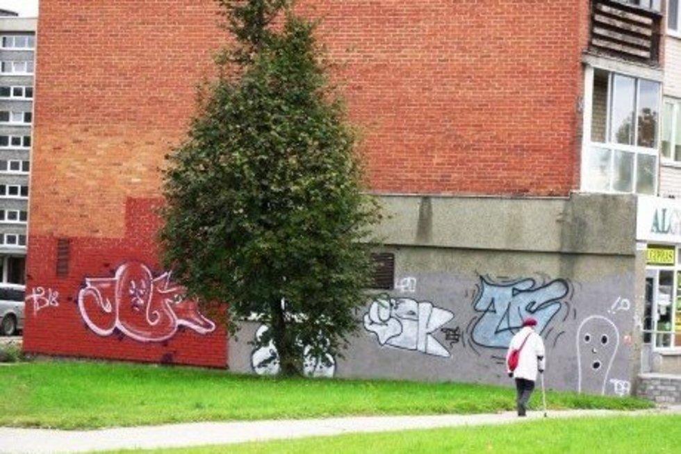 Draudimai suveikė atvirkščiai: ant sienų – nauja grafitų banga (nuotr. leidėjų)