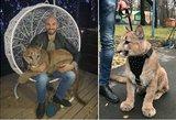 Norėjo katino – įsigijo pumą: augintinio nuotraukos užvaldo socialinius tinklus
