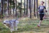 Lietuvoje populiarėja bėgimas su šunimis