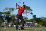 Kuriozas: golfo legendos smūgis lazda vos nepražudė anties gyvenimo