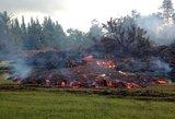 Havajai virsta pragaru: žemė nenustoja drebėti, lava naikina viską