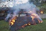 Siaubas Havajuose: išsiveržus ugnikalniui, lava laidoja viską savo kely