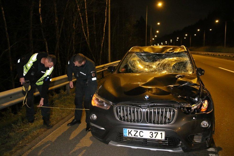 Prie Grigiškių į greitkelį išbėgęs briedis žuvo (nuotr. Broniaus Jablonsko)
