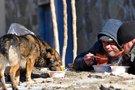 Benamiai valgo iš vienkartinių plastikinių indų (nuotr. SCANPIX)