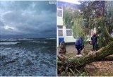 Stichija siaubia Lietuvą: talžo 5 metrų aukščio bangos, plėšia stogus ir varto medžius