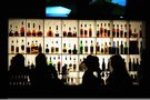 Alkoholis (nuotr. Fotodiena.lt)