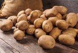 Rudens klasika – bulvės: kaip nustebinti šeimą?