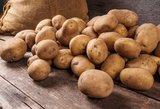 400 tūkst. eurų – po bulvėmis rastas palikimas?