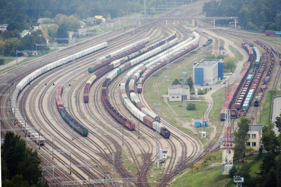 """Rail Baltica"" (nuotr. Fotodiena.lt/Audriaus Bagdono)"