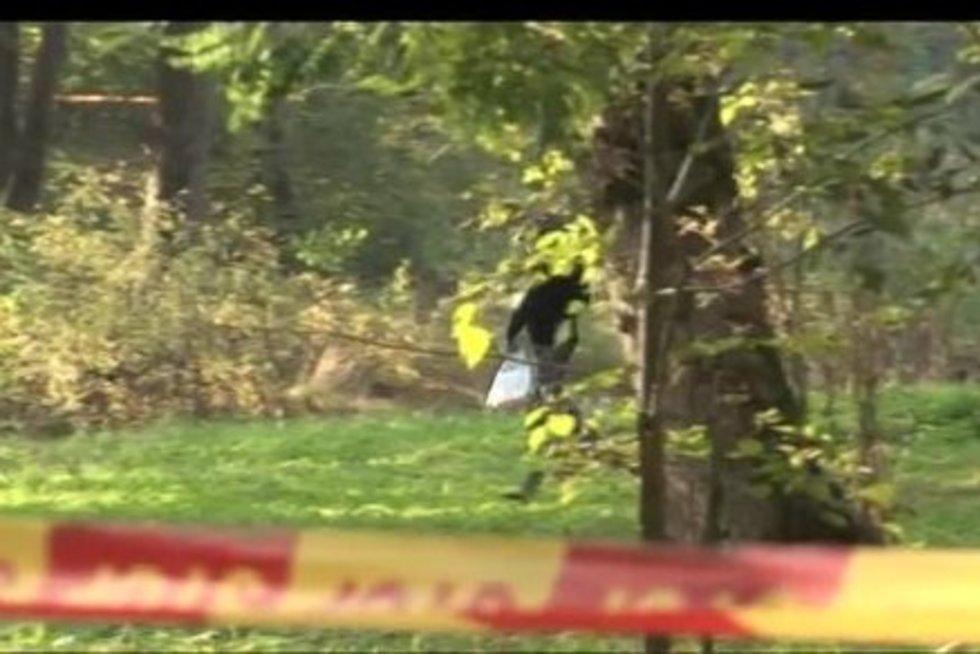 Kraupus nusikaltimas (nuotr. TV3)