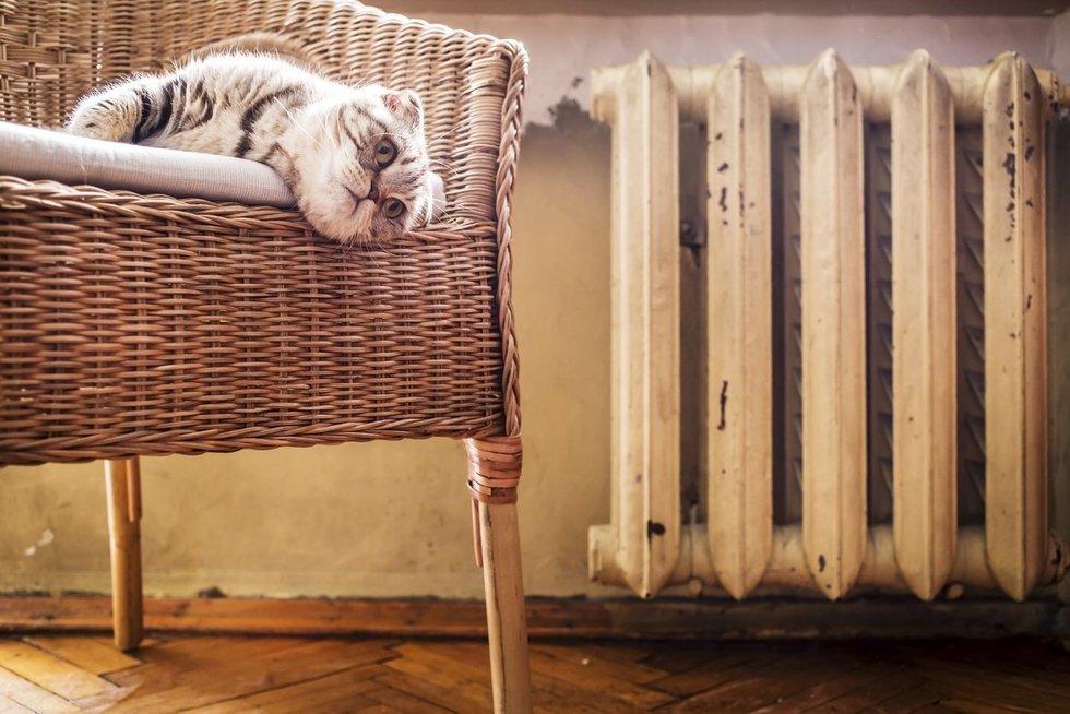 Šildymas (nuotr. Fotolia.com)