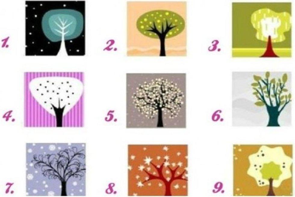 Išsirinkite medį