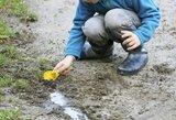 Atrado būdą išvalyti žolės dėmes: prireiks tik acto