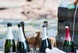 Nauji alkoholio draudimai: paskelbti 4 skirtingi sumanymai