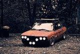 Permainingų orų baubas – druska ant automobilio kėbulo