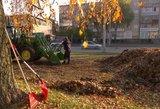 Turbūt net nenumanėte: kur lapai dingsta, kai juos surenka iš kiemų ir gatvių