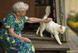 L. Kukuraičiui teks paaiškinti, kas iš tikro rengė pensijų reformą