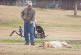 Milijonai peržiūrų: ilgiau parke pabūti norėjęs šuo išdūrė šeimininką
