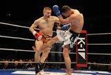 2013 metų Lietuvos MMA bušido kovotojo rinkimai: DEIVIDAS DANYLA