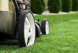 Ką kiekvienas privalo žinoti apie sodo techniką?