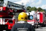 Vilniuje siautėjo padegėjai