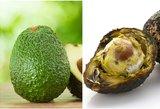 Visą gyvenimą avokadus rinkotės neteisingai: tereikia žinoti 1 gudrybę